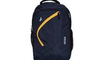 Laptop Backpack under 1000