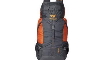 Rucksack bag under 2000 rs