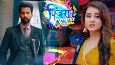 Pinjara Khubsurti Ka Colors TV Serial