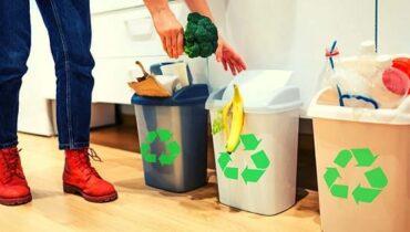 Segregate Waste